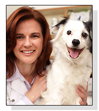 Dr. Angela Hughes l on Pet Life Radio