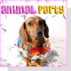 pet podcast - The Animal Party - join the party with your pets!