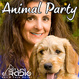 Animal Party Widget