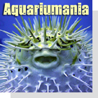 pet podcast - Aquariumania - all about tropical fish