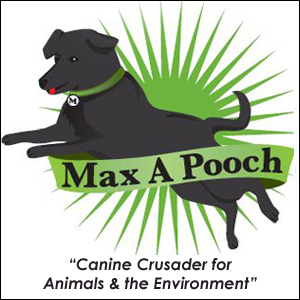 Awesome Advocates on Pet Life Radio