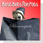 pet podcast - Best Bets for Pets - New Pet Products
