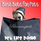 Best Bets for Pets Widget