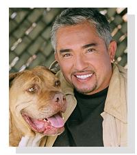 DAS Original aus den USA vom bekannten &quot;Hundeflüsterer&quot; <b>Cesar Millan</b>. &quot; - CesarMillan