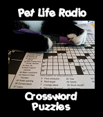 Play our interactive crossword puzzles!