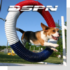 pet podcast - DSPN - Dog Sports & Performance Network