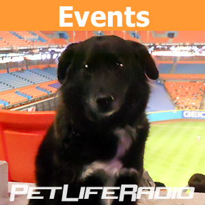 Events pet podcast & radio show