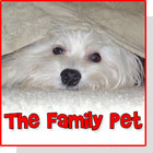 pet podcast - the Family Pet on Pet Life Radio