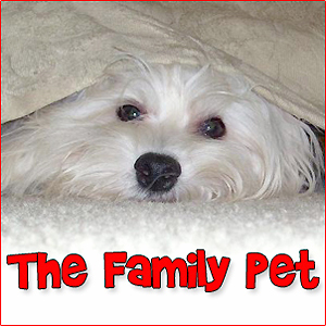 The Family Pet - Pets & Animals on Pet Life Radio (PetLifeRadio.com)