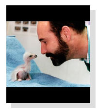 Dr. Freeland Dunker on Pet Life Radio