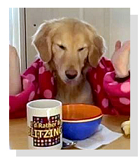 Breakfast At Ginger's on Pet Life Radio
