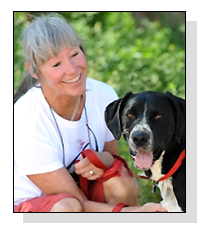 Holly Curtis   on Pet Life Radio