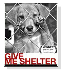 Give Me Shelter on Pet Life Radio