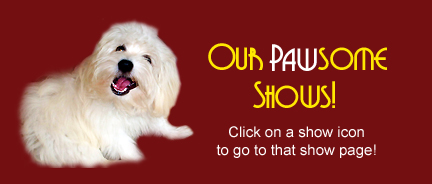 Our Pawsome Pets Shows on Pet Life Radio!