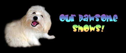 Our Pawsome Shows on Pet Life Radio!
