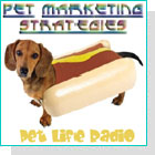 pet podcast - P.M.S. - Pet Marketing Strategies for the Petpreneur on Pet Life Radio