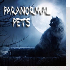 pet podcast - Paranormal Pets - Ghostly Encounters with Past Pets