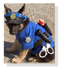 Friends of  New Mexico K-9
