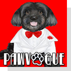 pet podcast - PawVogue - pet fashion