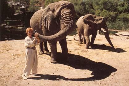 Peggy McCay and Elephant