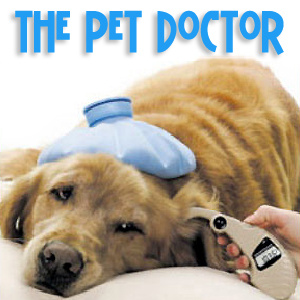 The Pet Doctor pet podcast & radio show