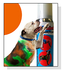 PetPaint on Pet Life Radio