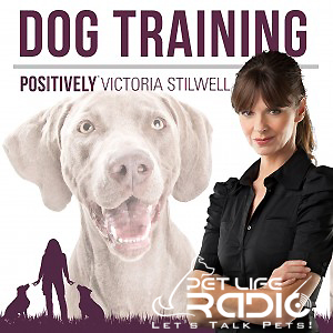Positively Podcast pet podcast & radio show
