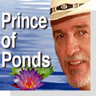 pet podcast - Prince of Ponds on Pet Life Radio