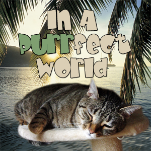 In A Purrfect World pet podcast & radio show