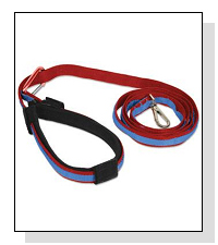 Kurgo Quantum Leash  on Pet Life Radio