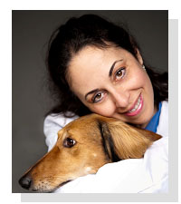 Dr. Stefanie Schwartz  on Pet Life Radio