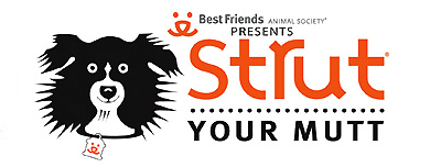 Strut Your Mutt on Pet Life Radio