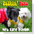 pet podcast - Talkin' Pets -  All about pets