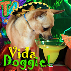 Vida Doggie - Start you and your dog's day with a little Latin Flavor. It's one Spicy show - Pets & Animals on Pet Life Radio (PetLifeRadio.com)