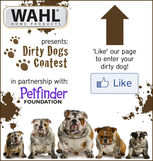Dirty Dogs Contest on Pet Life Radio
