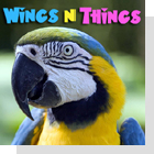 pet podcast - Wings 'n Things-Birds as pets