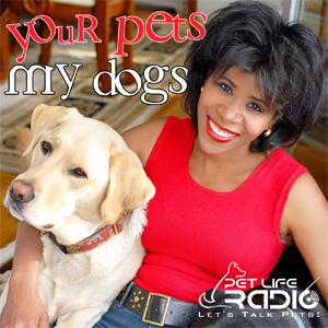 Your Pets My Dogs pet podcast & radio show