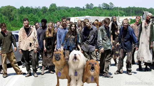 Are You Ready for the Zombie Apocalypse on Pet Life Radio?
