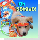 pet podcast - Oh Behave