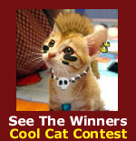 See the winners of the Pet Life Radio Cool Cat Contest!