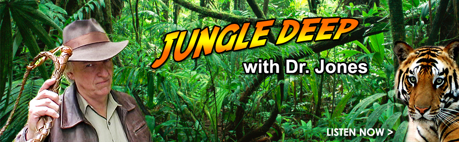 Jungle Deep Pet Radio Show