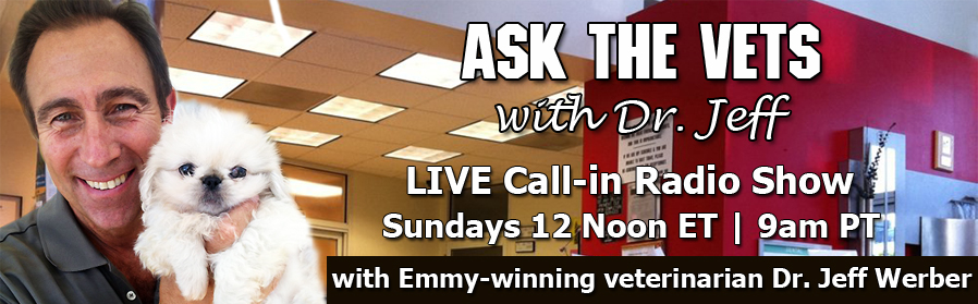 Ask the Vets Pet Radio Show