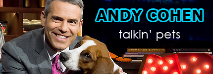 Andy Cohen on Pet Life Radio