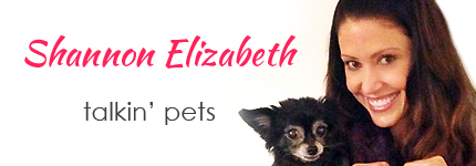 Shannon Elizabeth on Pet Life Radio