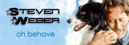 Steven Weber on Pet Life Radio