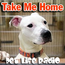 Take Me Home pet radio and podcast