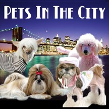 Pets in the City pet radio and podcast