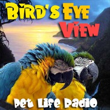 Bird's Eye View pet radio and podcast
