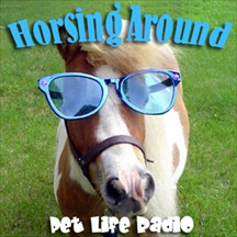 Horsing Around horses radio and podcast