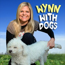 Wynn with Dogs pet radio and podcast